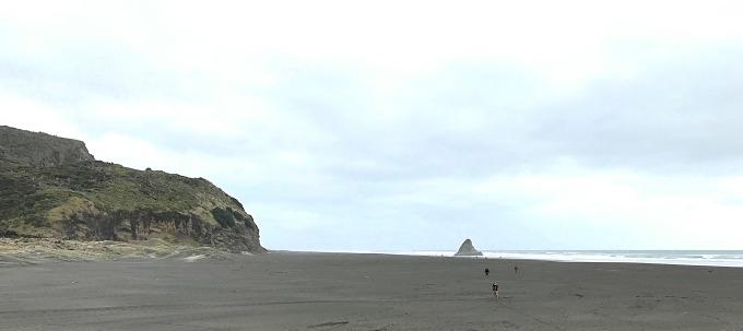 piano NZ