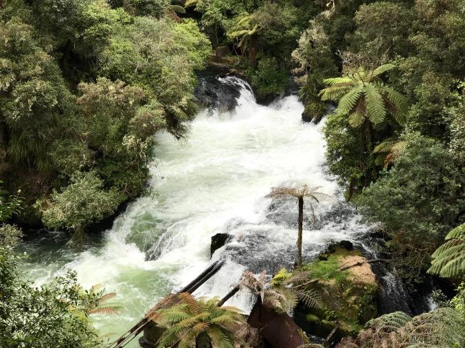 cascade 2 NZ